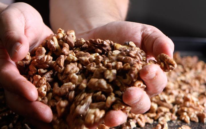 Biologische pitten, zaden en noten - Broodcompany